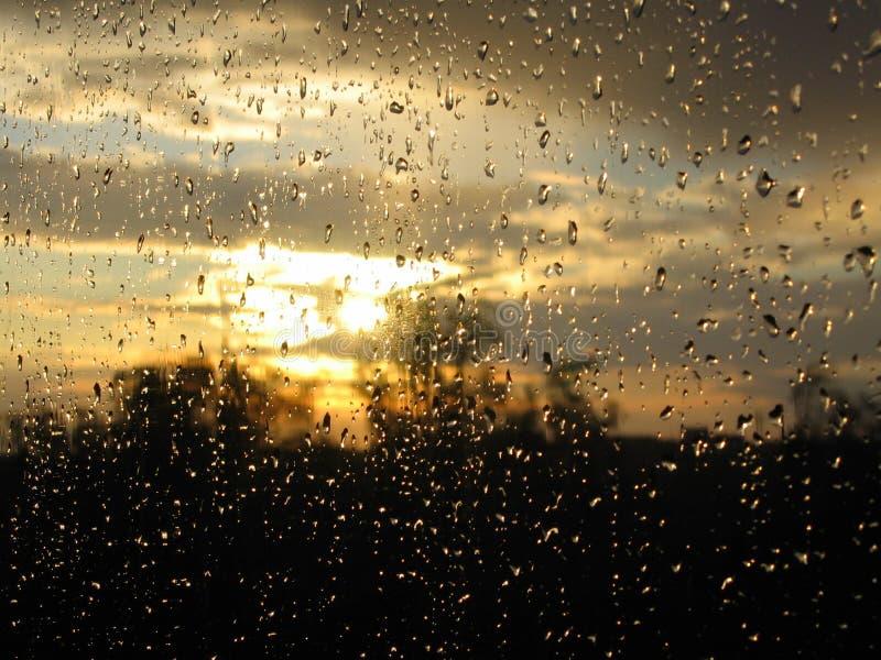 Gouttes de pluie gentilles après pluie photos libres de droits