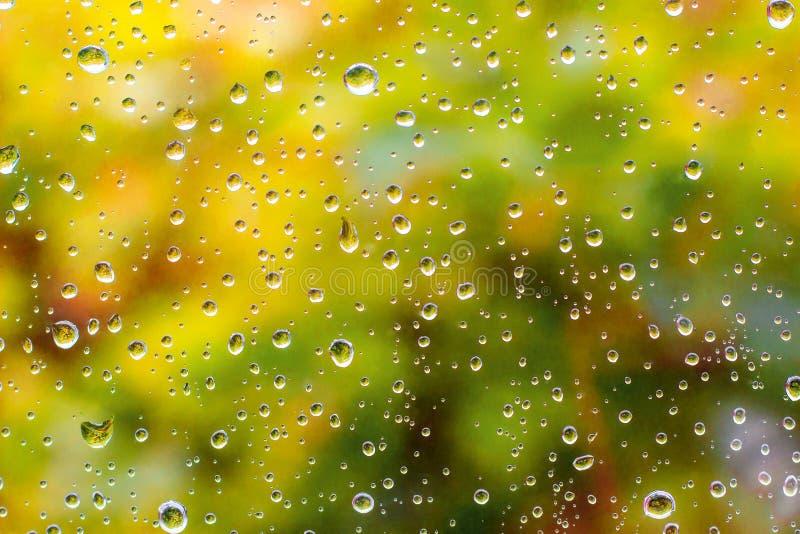 Gouttes de pluie sur la fenêtre, feuillage d'automne photographie stock libre de droits