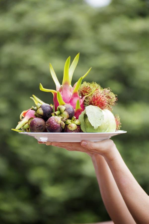 Goyave et Dragon Fruit de mangoustan du plat image libre de droits