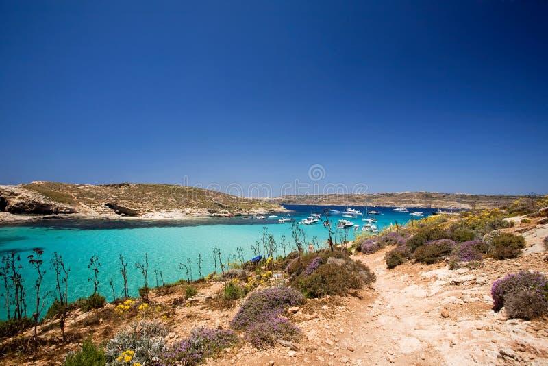 Gozo Blau-Lagune stockbild