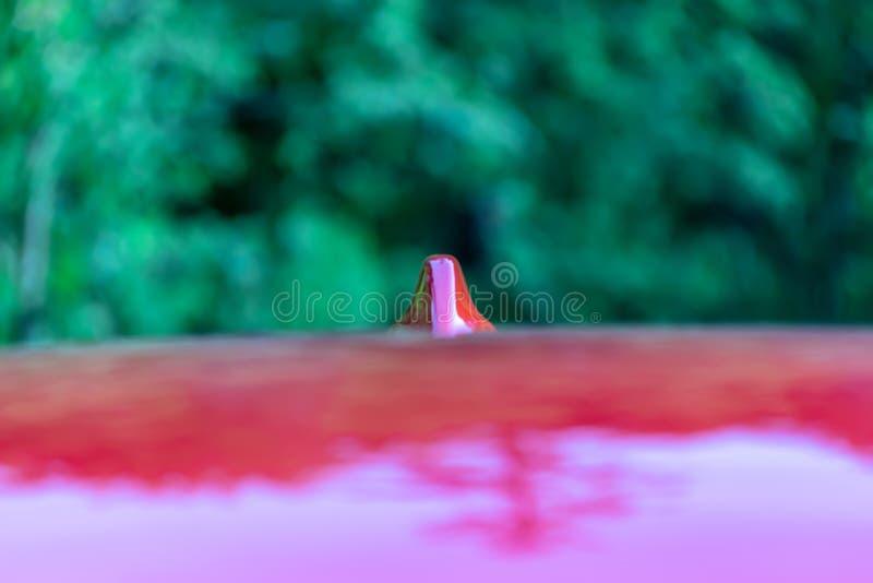 GPS-Antenne auf dem Dach eines roten Autos stockbild