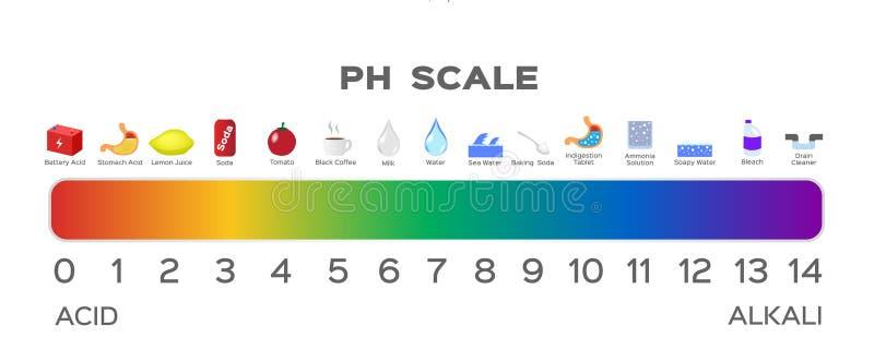 Gráfico de la escala del pH ácido a basar stock de ilustración