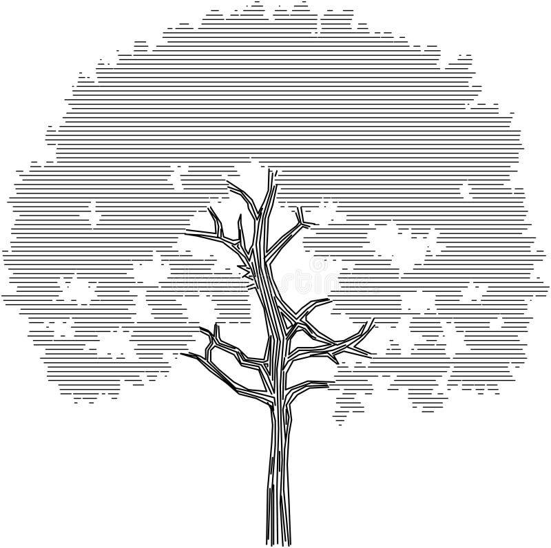 Gráfico de la silueta del árbol en un fondo blanco fotografía de archivo