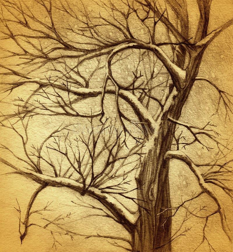 Gráfico del árbol libre illustration