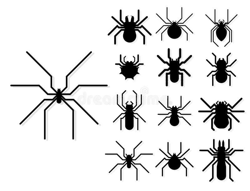 Gráfico do medo do aracnídeo da silhueta da Web de aranha ilustração do vetor