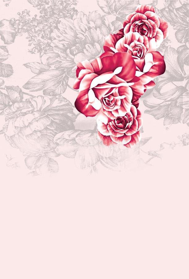 Gráfico floral cor-de-rosa do fundo de Rosa foto de stock