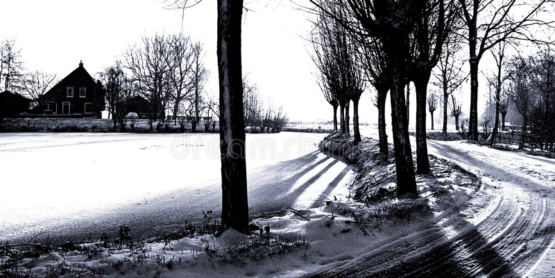 Gráfico Winterland De FV Imagem de Stock Royalty Free