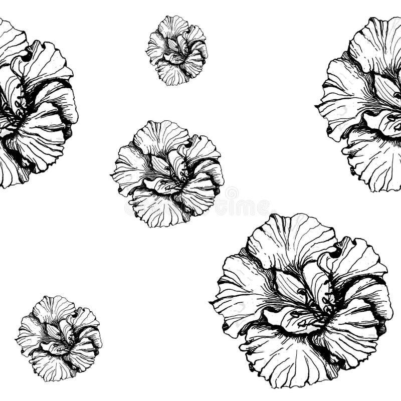 Gráficos brancos pretos da tinta da ilustração do teste padrão da chagas ilustração do vetor