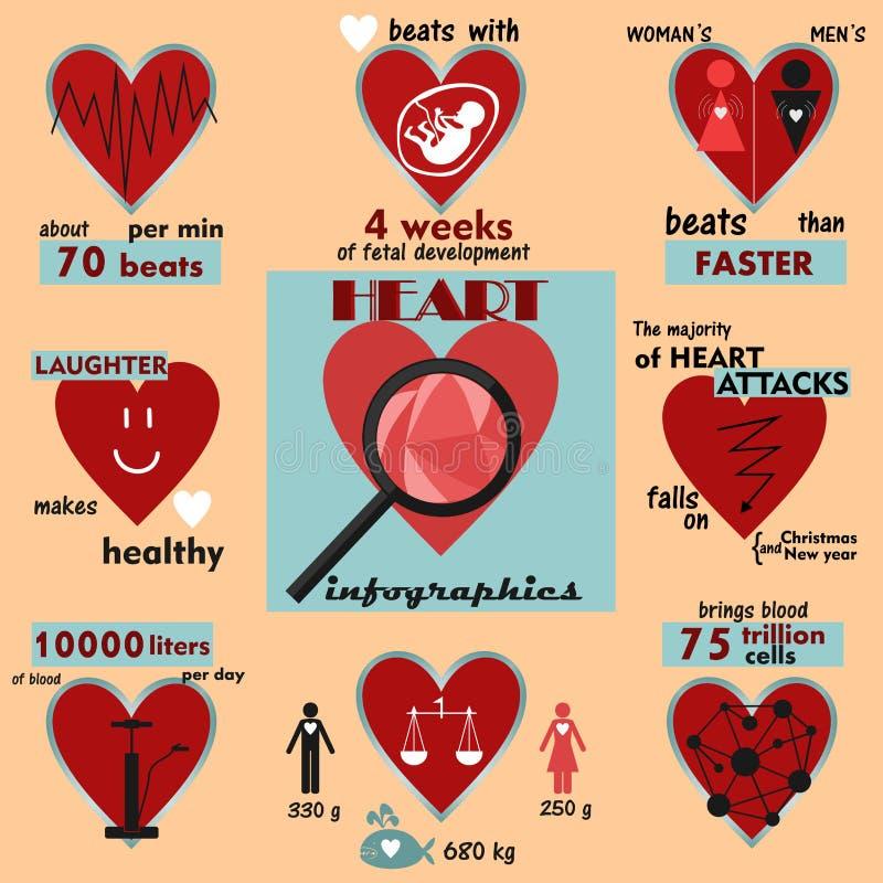 Gráficos da informação e fatos interessantes sobre o coração humano ilustração stock