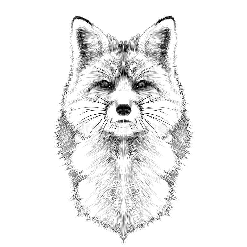 Gráficos de vector del bosquejo de la cabeza del Fox libre illustration