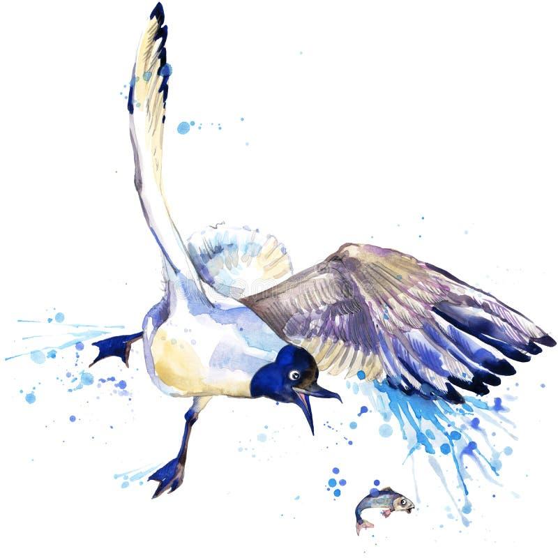 Gráficos do t-shirt da gaivota ilustração da gaivota com fundo textured aquarela do respingo seagul incomum da aquarela da ilustr ilustração royalty free