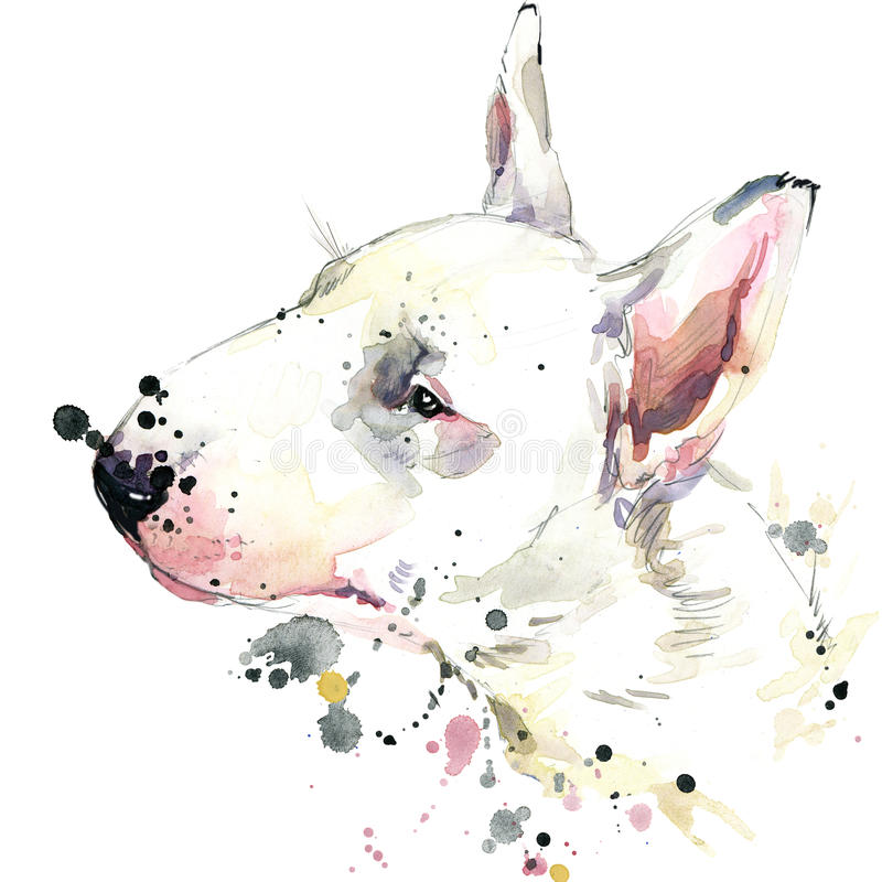 Gráficos do t-shirt do cão de bull terrier Ilustração do cão com fundo textured aquarela do respingo aquarela incomum da ilustraç ilustração royalty free