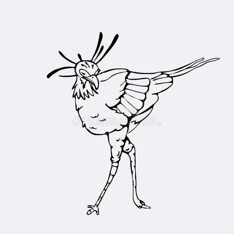 Gráficos a mano del lápiz, pájaro de secretaria, águila, halcón, pigargo stock de ilustración