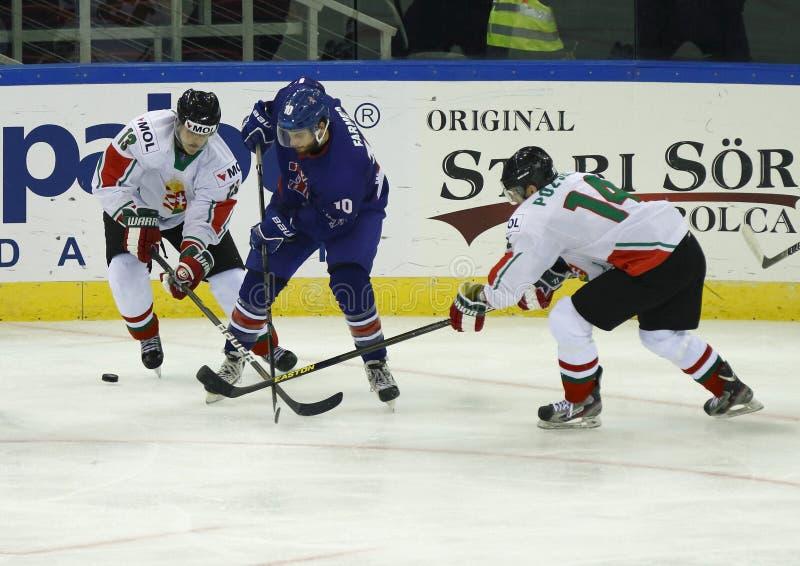 Grâ Bretanha contra a esteira do hóquei em gelo do campeonato mundial de Hungria IIHF imagens de stock royalty free