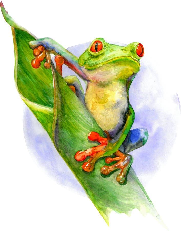 Grüner Frosch mit roten Augen und den Fingern, die auf dem grünen Blatt sitzen Aquarellillustration lokalisiert auf weißem Hinter stockfoto