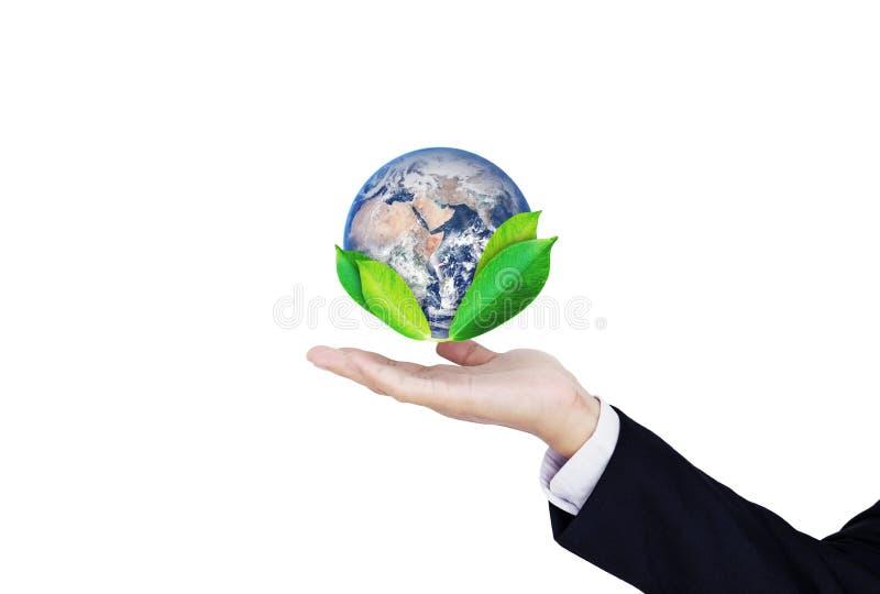Grünes und Klimageschäft, die Welt rettend Geschäftsmannhandholdingkugel mit den Blättern, lokalisiert auf weißem Hintergrund ele lizenzfreie stockbilder