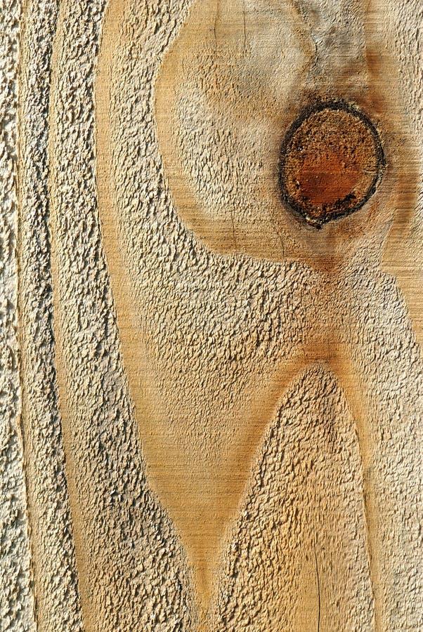 Grão da madeira da textura imagem de stock royalty free