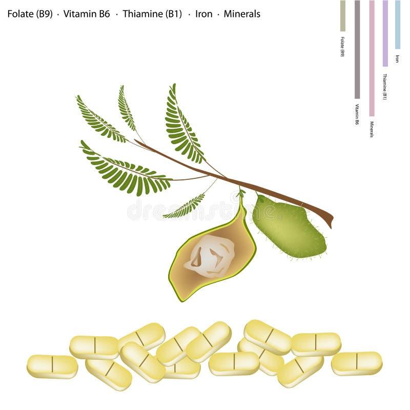 Grão-de-bico com vitamina B9, B6 B1 e ferro ilustração do vetor
