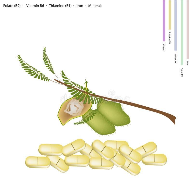 Grão-de-bico com vitamina B9, B6 B1 e ferro ilustração royalty free