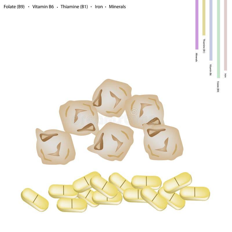 Grão-de-bico secado com vitamina B9, B6 B1 e ferro ilustração do vetor