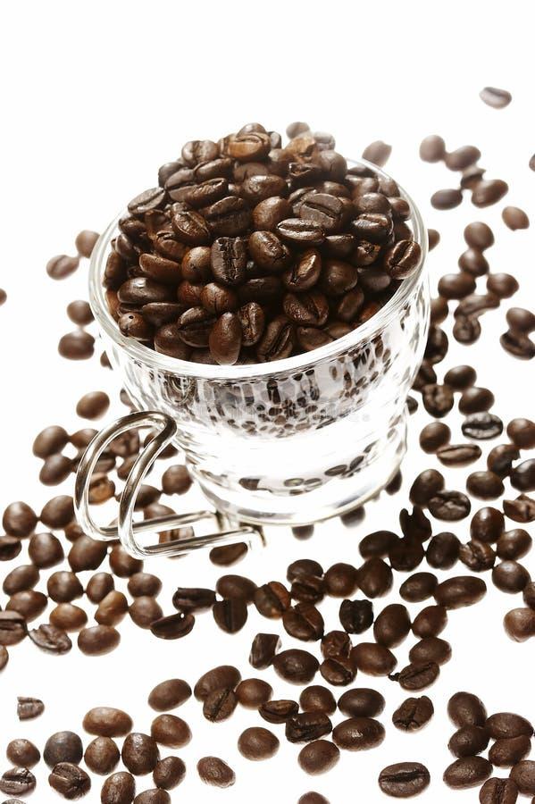 Grão de café imagens de stock
