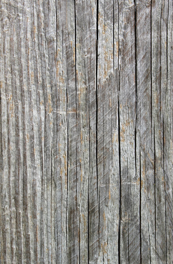 Grão de madeira III fotografia de stock