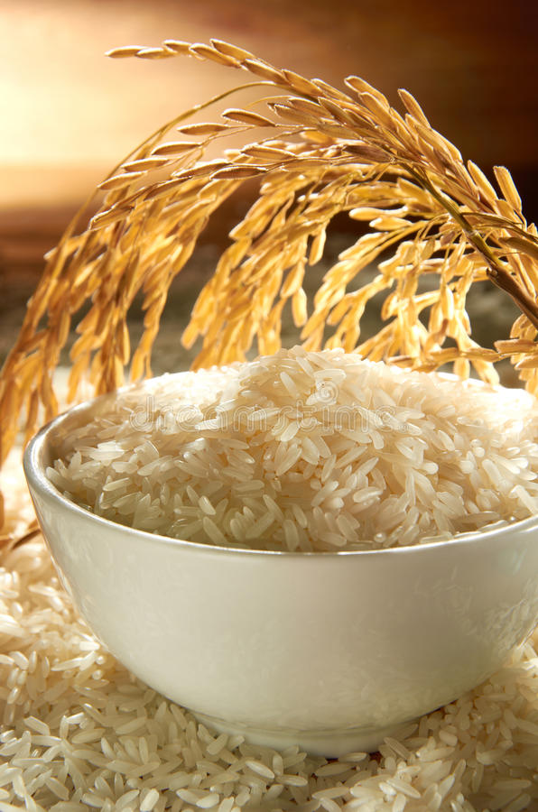 Grão do arroz