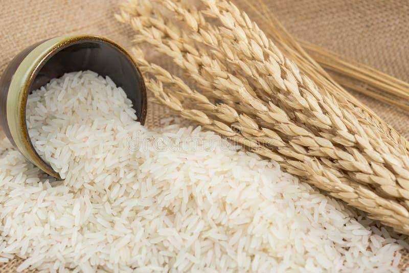 Grão do arroz na bacia na tabela imagem de stock royalty free