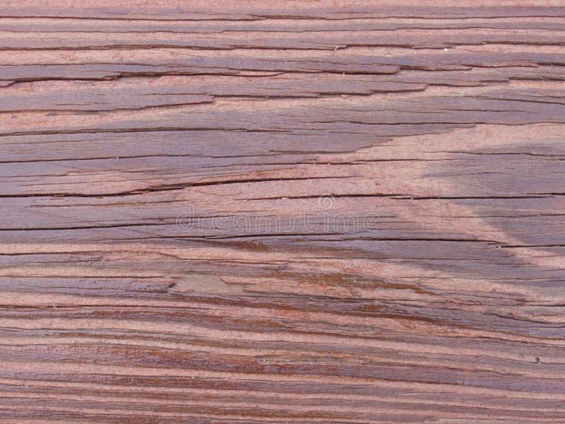 Grão Do Redwood Imagens de Stock