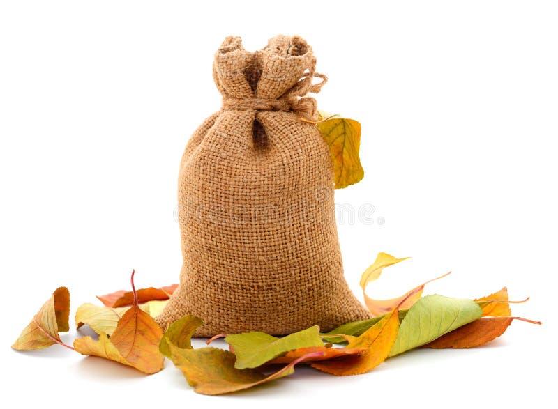 Gr?o do trigo no saco e nas folhas de outono imagens de stock