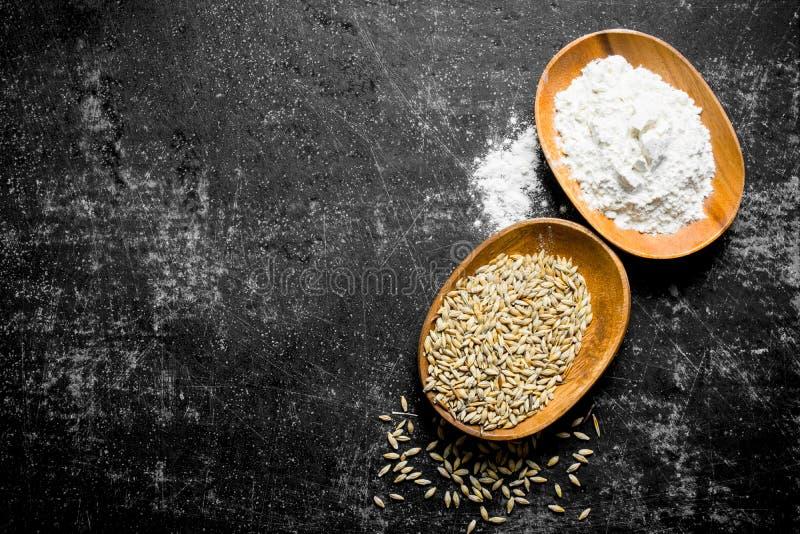 Grão e farinha do trigo em umas bacias imagens de stock royalty free