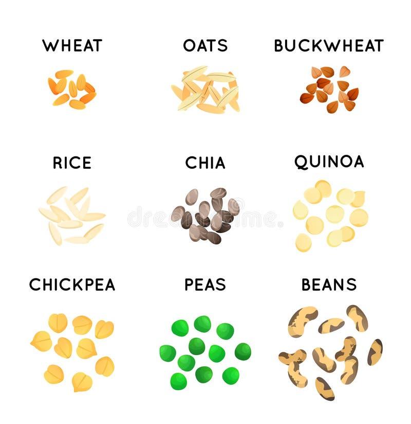 Grão e feijões de espécies agrícolas diferentes Cereais gráficos para a etiqueta e o empacotamento ilustração do vetor