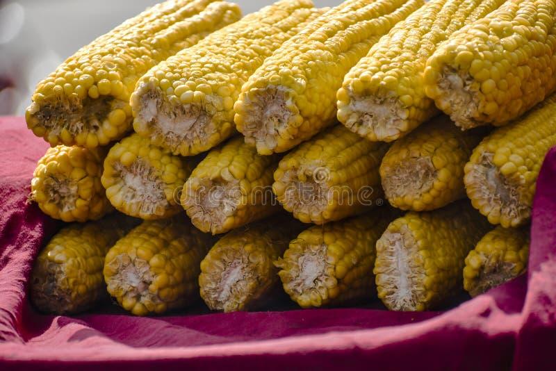 Grãos amarelos fotos de stock royalty free