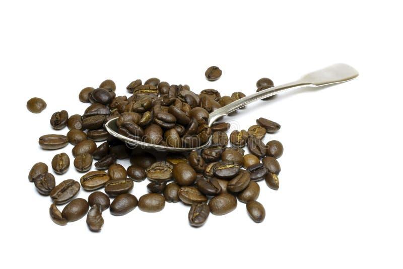 Grãos de café em uma colher de prata em um fundo branco imagem de stock