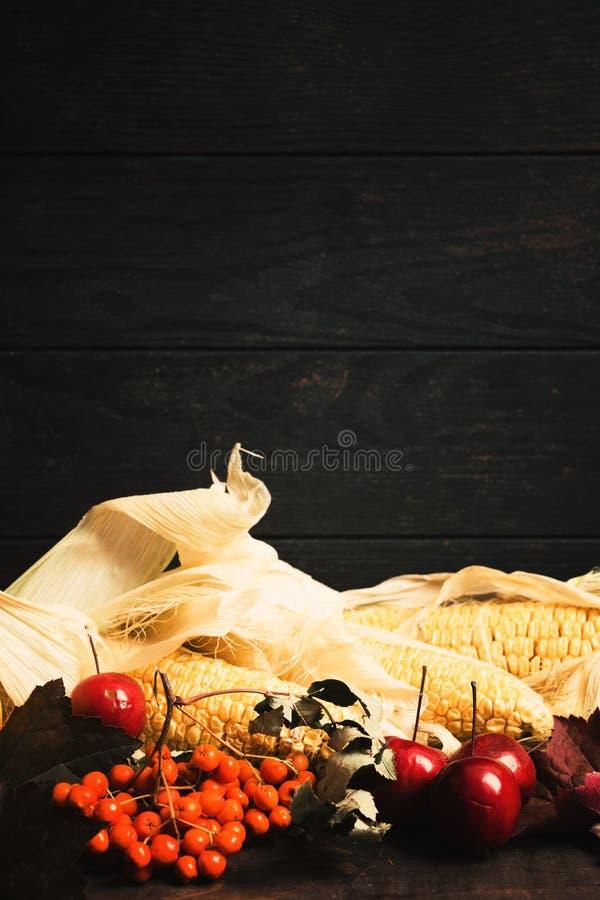 Grãos, Rowan, maçãs e folhas de outono no fundo de madeira imagem de stock royalty free