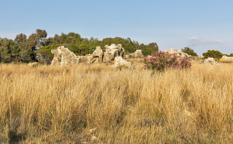 Gräber der Könige in Paphos auf Zypern stockfotografie