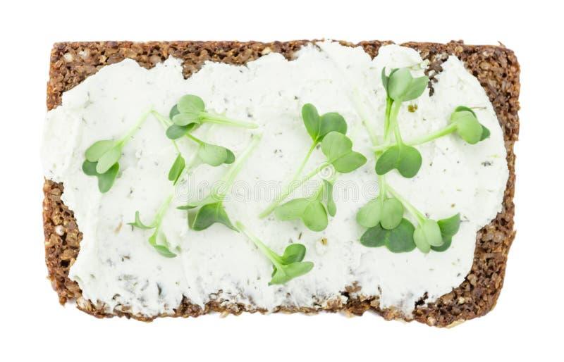 Gräddost med ny kryddkrasse på en skiva av bröd som isoleras på wh royaltyfri foto