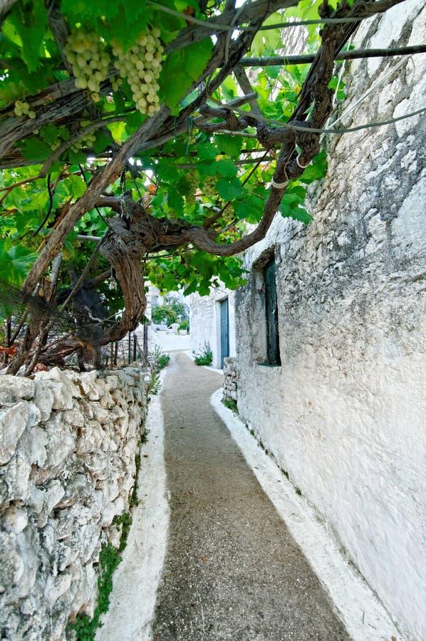 Gränd i grekisk by royaltyfri fotografi