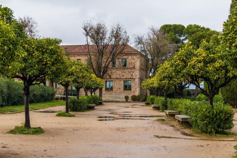Gränd med tangerinang-historisk byggnad royaltyfria foton