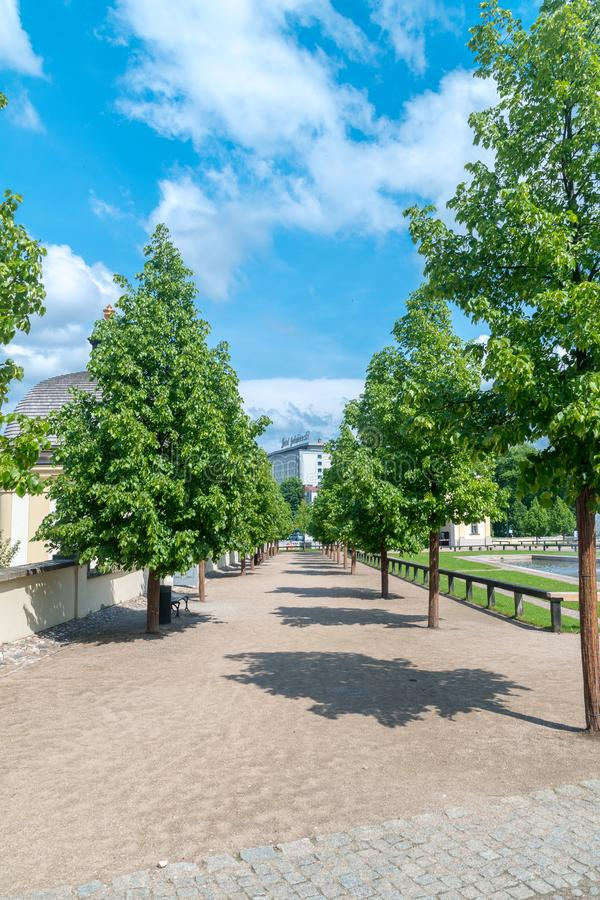 Gränd mellan träd på den Branicki slotten i Bialystok royaltyfri bild