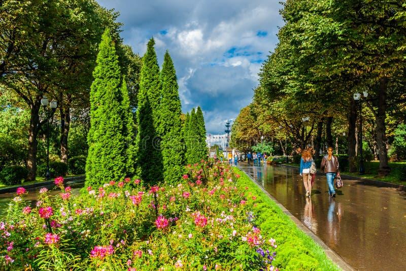Gränden av Moskva Gorky parkerar efter sommarregnet royaltyfria bilder
