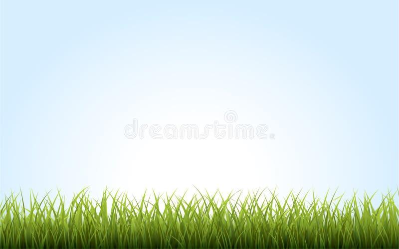 Gräns för grönt gräs på blå bakgrund fotografering för bildbyråer
