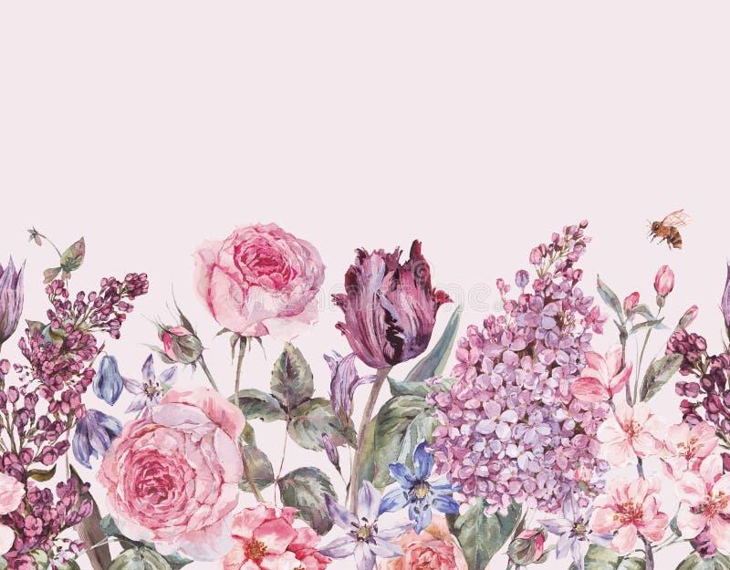 Gräns för trädgårds- vår för vattenfärg för tappning sömlös purpurfärgad blom- royaltyfri illustrationer