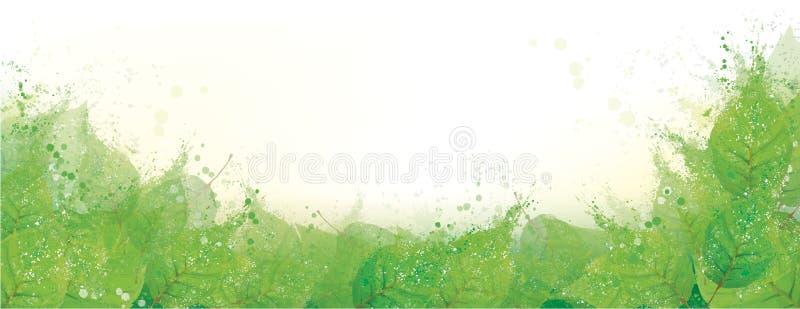 Gräns för vektorgräsplansidor vektor illustrationer