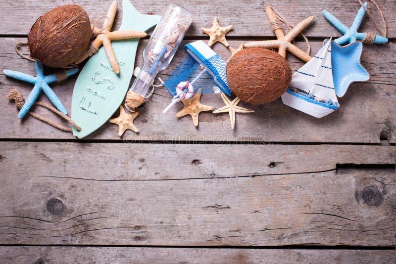 Gräns från kokosnötter och marin- objekt arkivbilder