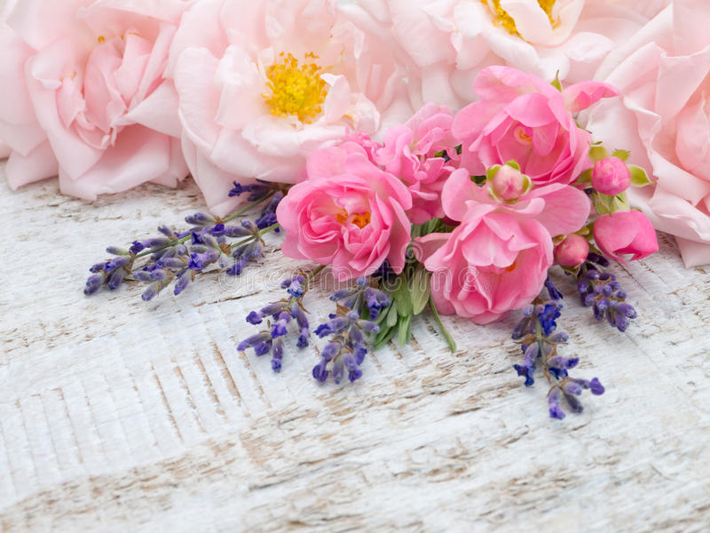 Gräns - rosa rosor och lavendelbukett arkivfoton