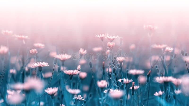 Gräns - rosa skogblommor på en bakgrund av blåttsidor och stammar Konstnärlig naturlig makrobild Begreppsvårsommar arkivbilder