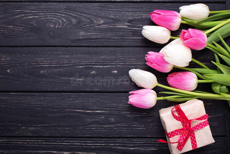 Gränsa från ljusa den rosa och vita tulpanblommor och asken med p fotografering för bildbyråer