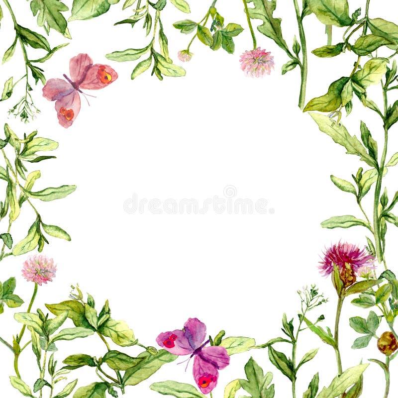 Gränsa ramen med lösa örter, ängblommor och fjärilar vattenfärg stock illustrationer
