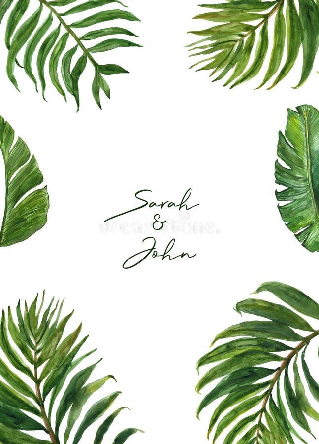 Gränsar tropiska sidor för vattenfärg med gömma i handflatan lövverk på vit bakgrund Modern exotisk växtram för att gifta sig, in royaltyfri illustrationer